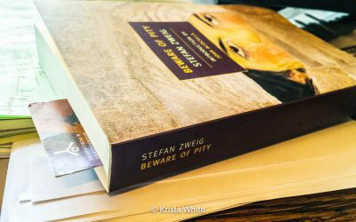 Beware of Pity by Stefan Zweig cover