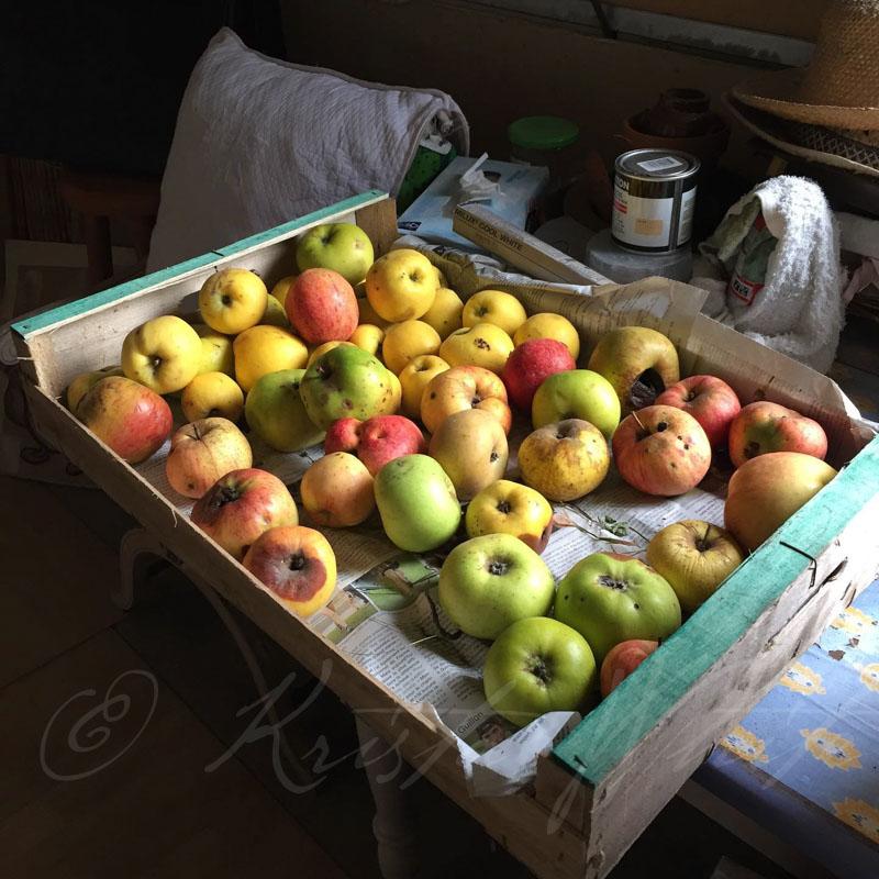 Saint Brevin France Pommes